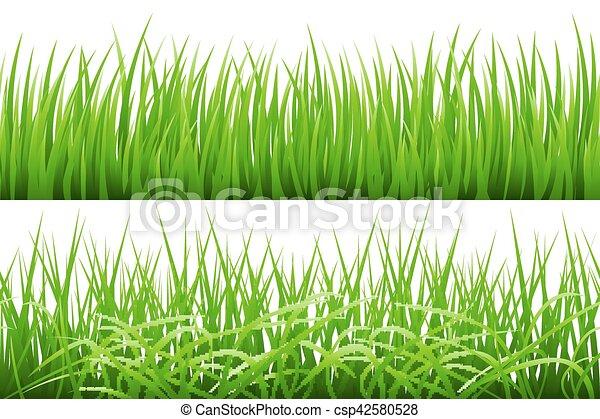 2 Hintergründe von grünem Gras, isoliert auf weißem Hintergrund, Vektorgrafik. - csp42580528