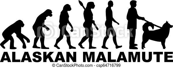 Alaskan Malamute Evolutionswort - csp64716799