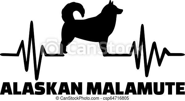 alaskisch malamute, wort, herzschlag - csp64716805