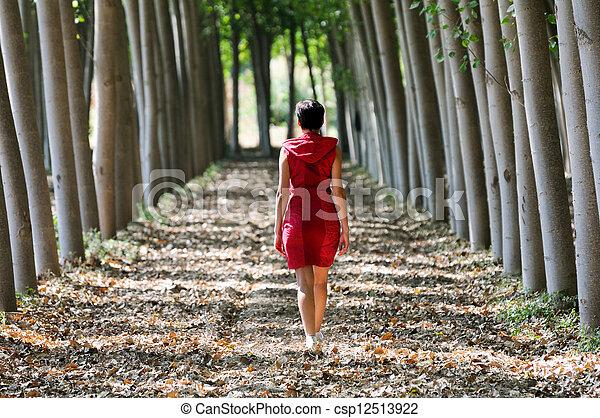 Frauen, die rot angezogen sind und im Wald spazieren gehen - csp12513922