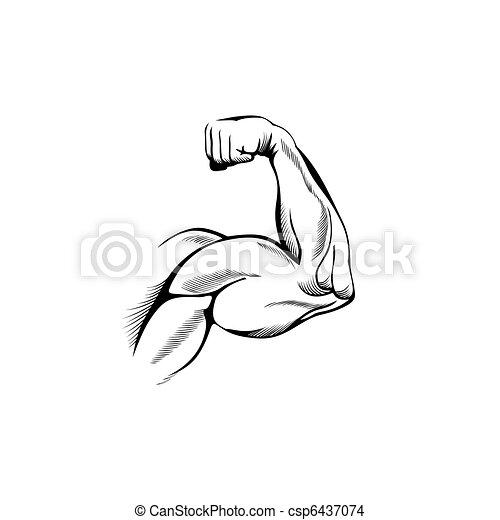 Armmuskeln - csp6437074