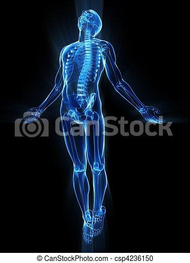 Aufregender menschlicher Körper - csp4236150