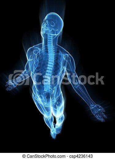 Aufregender menschlicher Körper - csp4236143