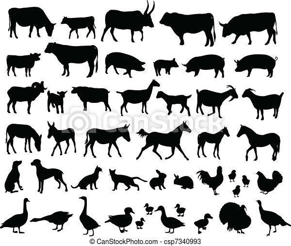 Bauerntiere. - csp7340993