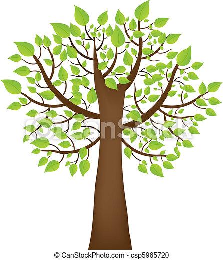 Baum - csp5965720