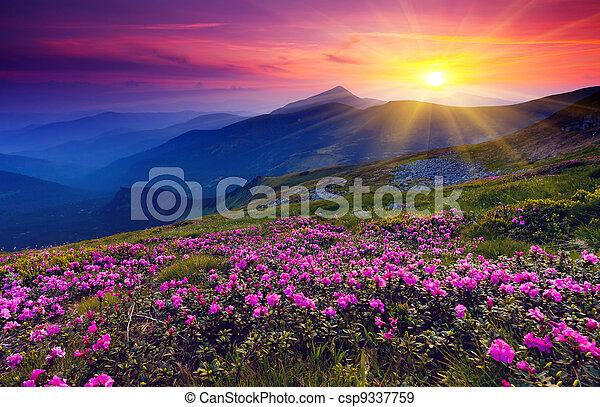 Berglandschaft - csp9337759