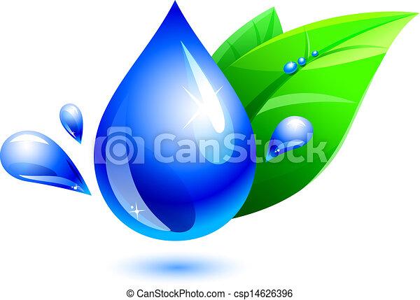bewässern tropfen, blatt - csp14626396