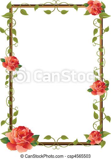 Bild für Bild mit Rose - csp4565503