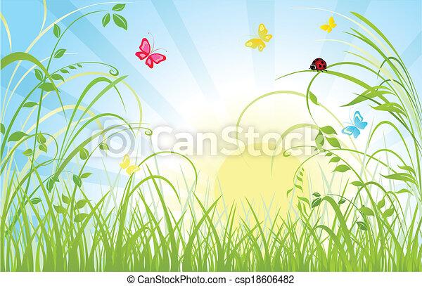 Floral Hintergrund - csp18606482