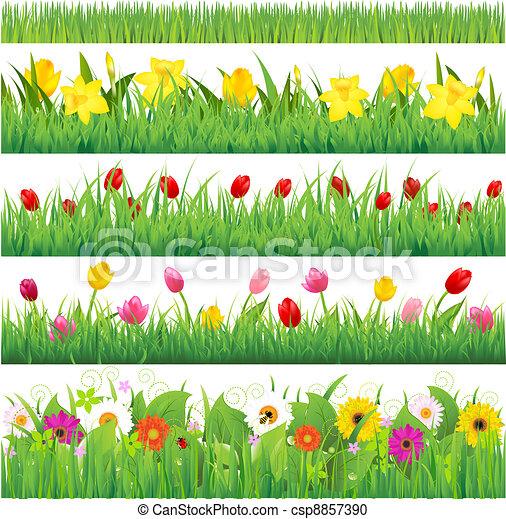 Blumengrenzen sind festgelegt - csp8857390