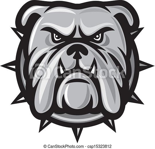 bulldogge, kopf - csp15323812
