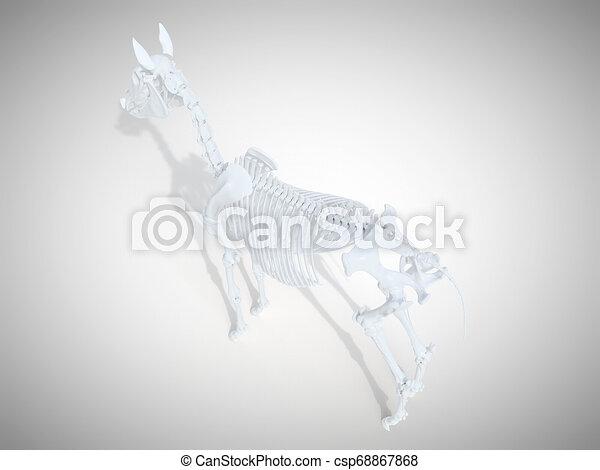 Das Skelettsystem. - csp68867868