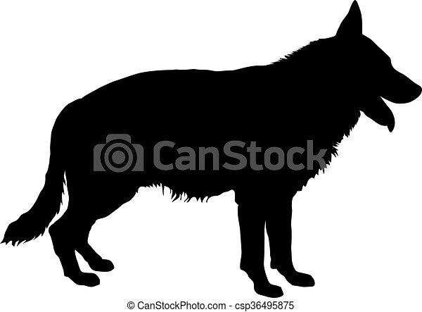 Deutsche Shepherd Silhouette. - csp36495875