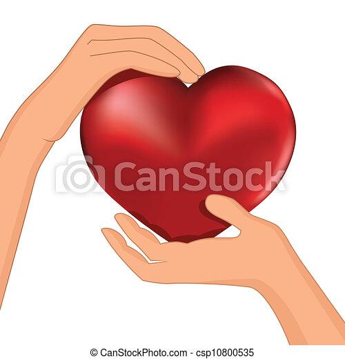 Die Person hat rotes Herz im Handvektor - csp10800535