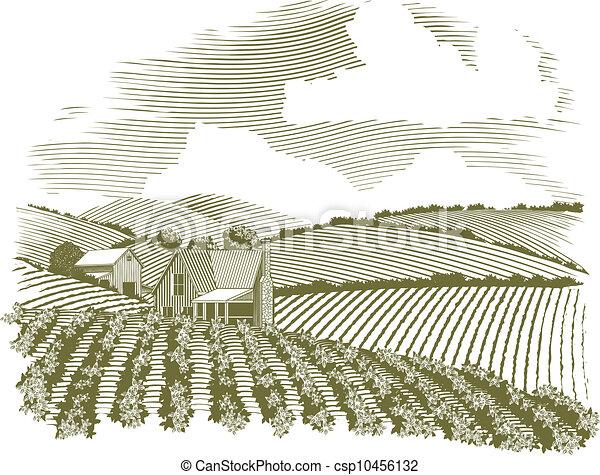 Ein abgeholztes Bauernhaus - csp10456132