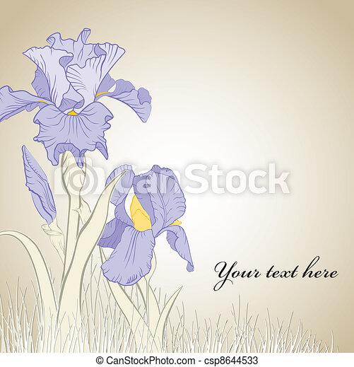 Frühlings-Iris-Blume - csp8644533