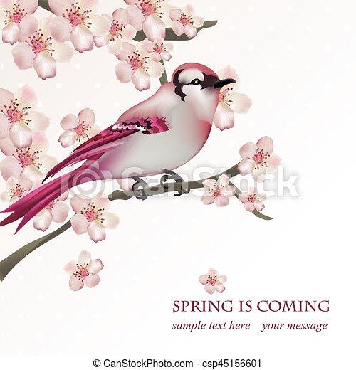 Frühlingsvogel auf blühenden Kirschbaum Zweig Vector Illustration. Schöne Postkarte für Muttertag, Geburtstag, Hochzeitstag. Pastellfarben. Vector Illustration - csp45156601