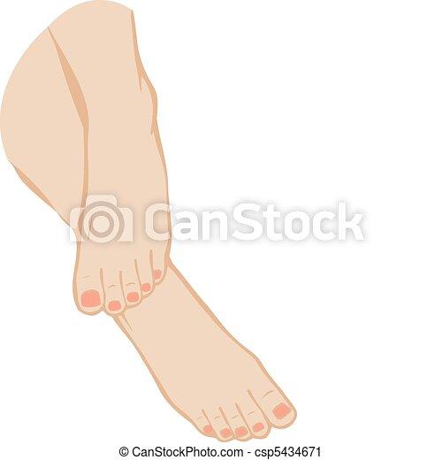 Vektor illustriert einen Fuß auf einem weißen Hintergrund - csp5434671