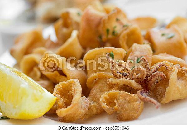 Gebratene Calamari - csp8591046