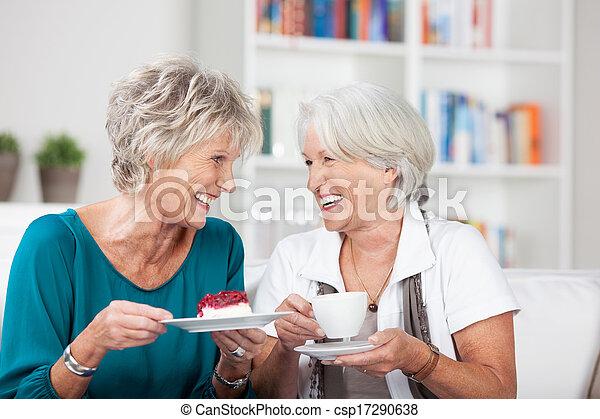Zwei ältere Damen genießen eine Tasse Tee - csp17290638