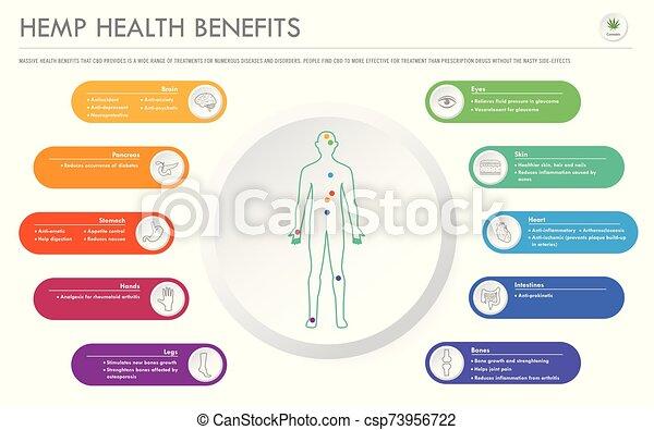geschaeftswelt, infographic, gesundheit, horizontal, vorteile, hanf - csp73956722