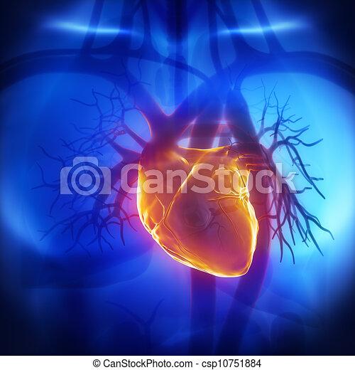 glühen, herat, brust, menschliche  - csp10751884
