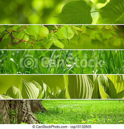 Grüner Hintergrund. - csp10132605