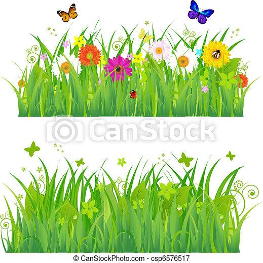 Grünes Gras mit Blumen und Insekten - csp6576517