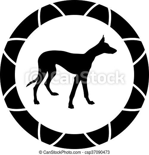 Greyhound. - csp37090473