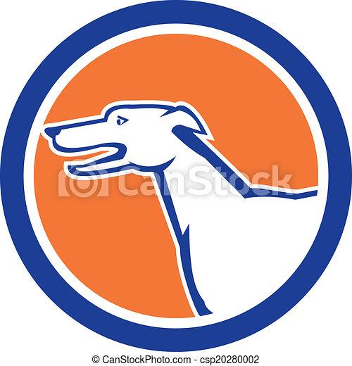 Greyhound Hundekopf Seite Retrokreis. - csp20280002