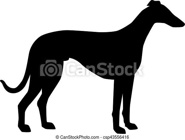 Greyhound Silhouette. - csp43556416