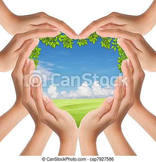 Hände machen Herzform, die Natur bedeckt - csp7927586