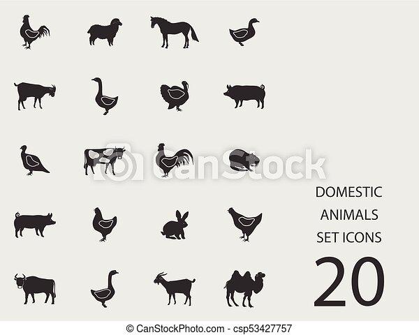 Häusliche Tiere mit flachen Ikonen. Vector Illustration - csp53427757