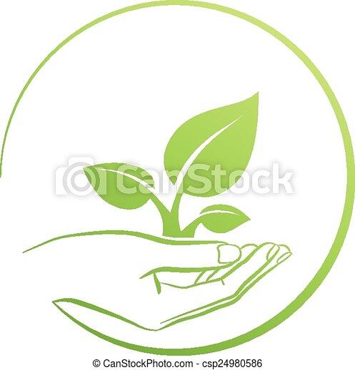Hand Holding Pflanze, Logo-Konzept. - csp24980586