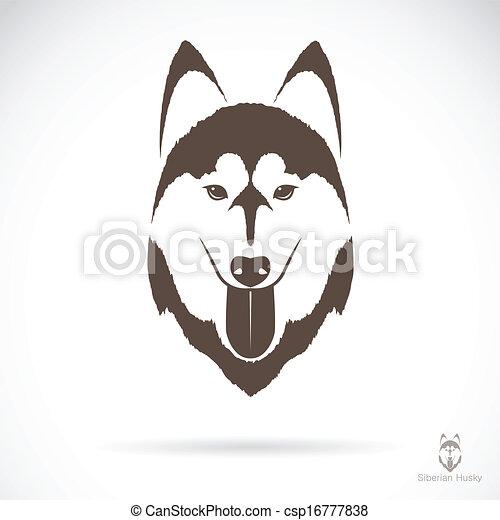 Vectors Bild eines Hundesilberianers Husky - csp16777838
