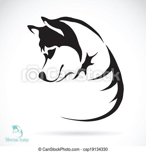 Vektorbild eines Hundes, siberianischer Husky - csp19134330