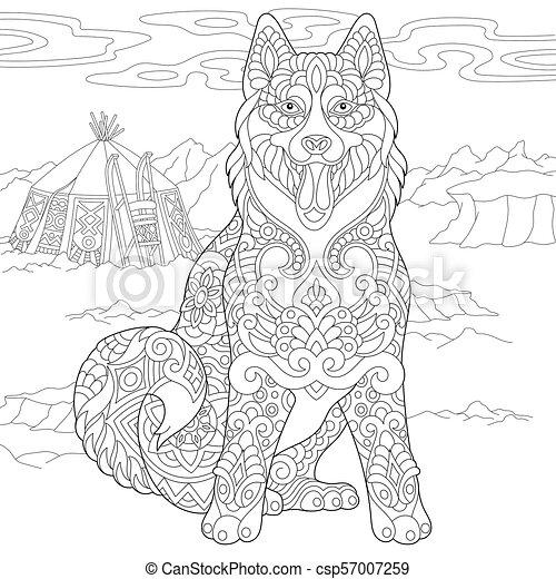 heiser, sibirisch, hund - csp57007259