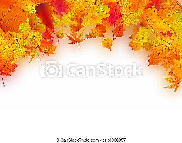 Herbst hinterlässt Hintergrund - csp4800357