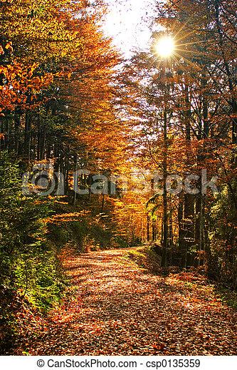 Herbst - csp0135359