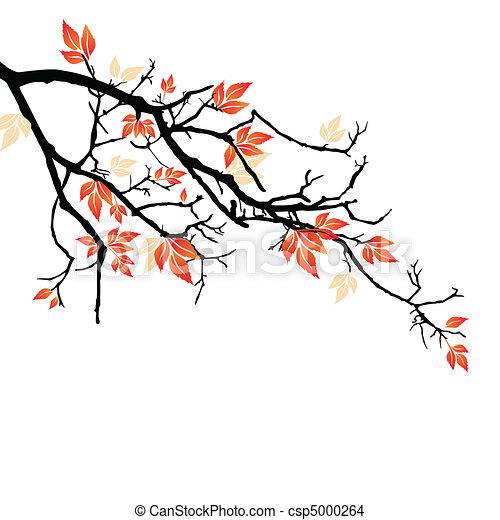 Herbstblätter - csp5000264