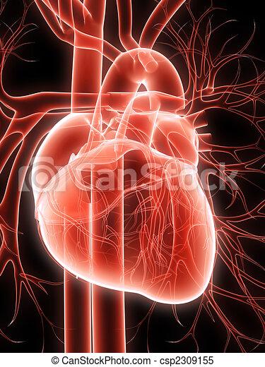 Menschliches Herz - csp2309155
