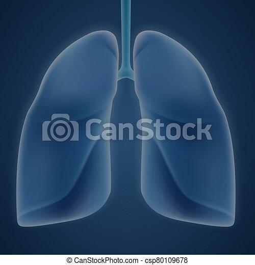 hintergrund., blaues, menschliche , lungen - csp80109678