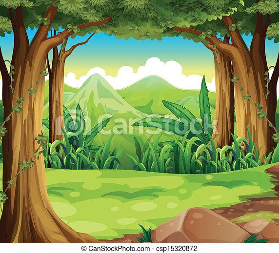hohe berge, grüner wald, über - csp15320872