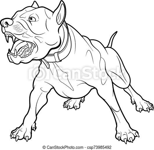 hund bellen - csp73985492