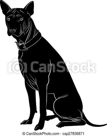 Hund - csp27836871
