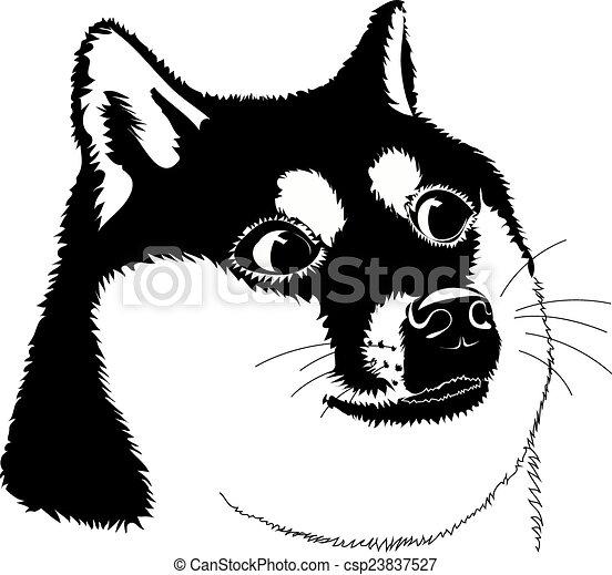 Hund - csp23837527