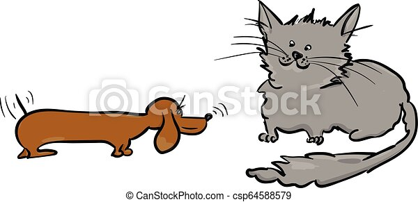 hund, katz - csp64588579