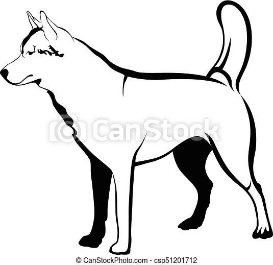 hund, schlittenhunde - csp51201712