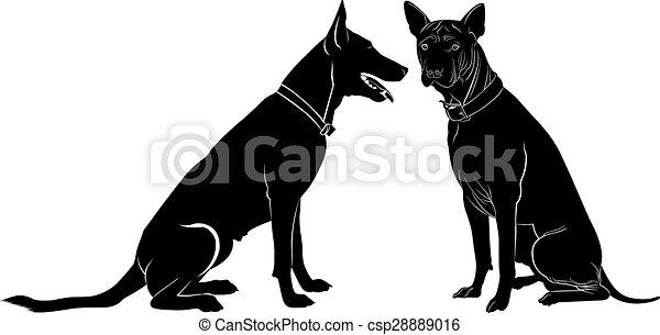 Hund - csp28889016