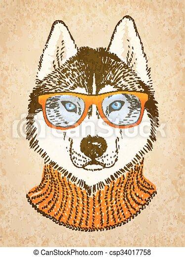 Husky Hund. Vector Illustration, eps 10. - csp34017758